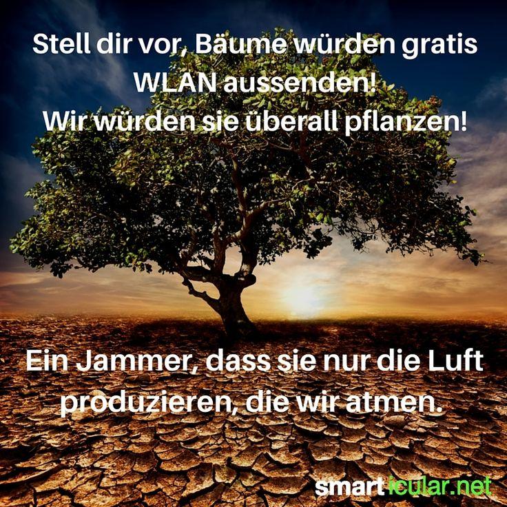 Stell dir vor, Bäume würden gratis WLAN aussenden! Wir würden sie überall pflanzen! Ein Jammer, dass sie nur die Luft produzieren, die wir atmen.