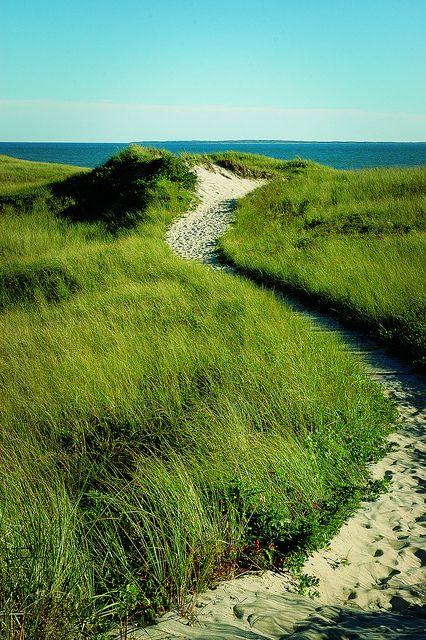 Philbin Beach, Martha's Vineyard #travel #massachusetts