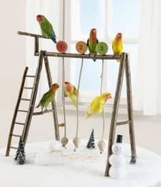 ♥ Pet Bird DIY Ideas ♥ DIY Small Pet Swing Set