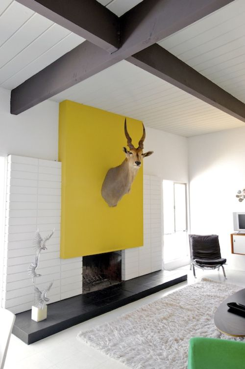 Focal Point - This modern living space has a bright yellow fireplace as a focal point drawing attention to this 3-dimension stuffed wall head (lol) to add a personalized touch.