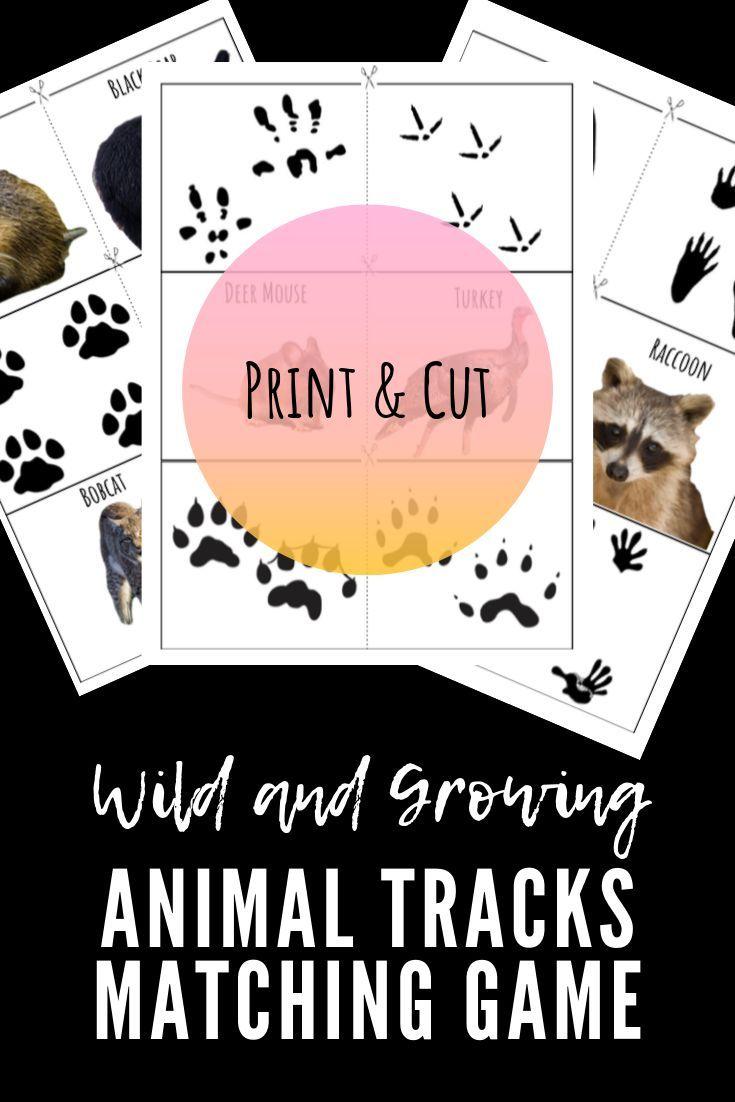 Animal Tracks Matching Game In 2020 Animal Tracks Matching Games Animal Printables