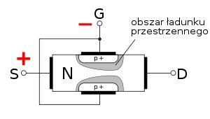 Tranzystory polowe w skrócie FET (Field Effect Transistor), są również nazywane unipolarnymi. Działanie tych tranzystorów polega na sterowanym transporcie jednego rodzaju nośników, czyli albo elektronów albo dziur. Sterowanie transportem tych nośników, odbywającym się w części tranzystora zwanej kanałem, odbywa się za pośrednictwem zmian pola elektrycznego przyłożonego do elektrody zwanej bramką.