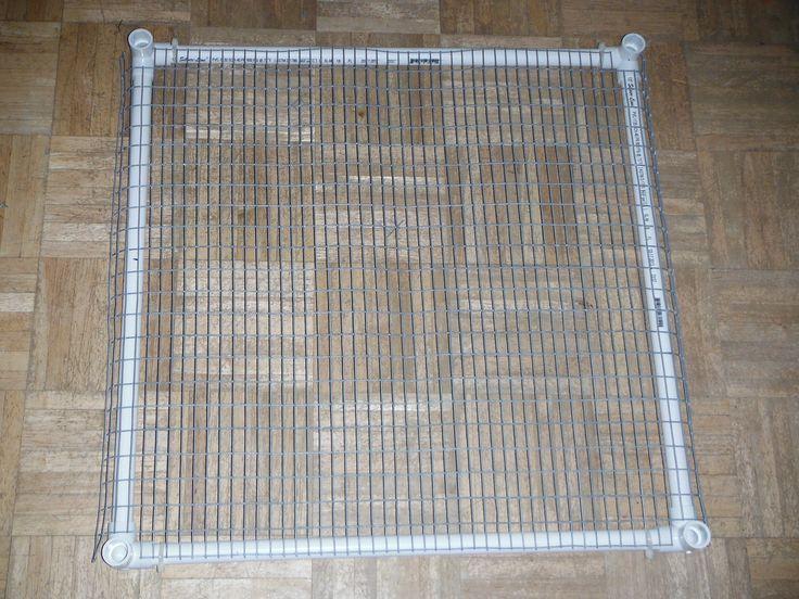 17 best images about quail on pinterest raising quail for Pvc rabbit cage