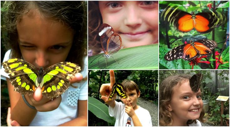10 Things to do with Kids in El Valle de Anton, Panama