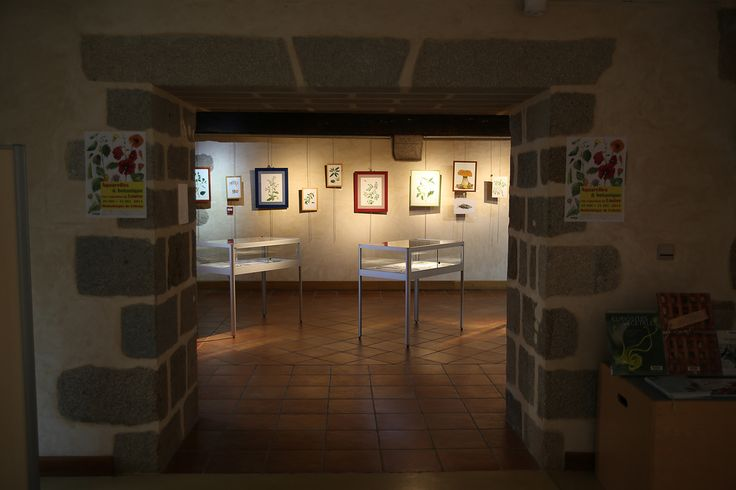 Exposition d'aquarelles originales de Louise, une artistes très sollicitée par les éditeurs d'ouvrages documentaires et scientifiques autour de la flore ou de la faune.