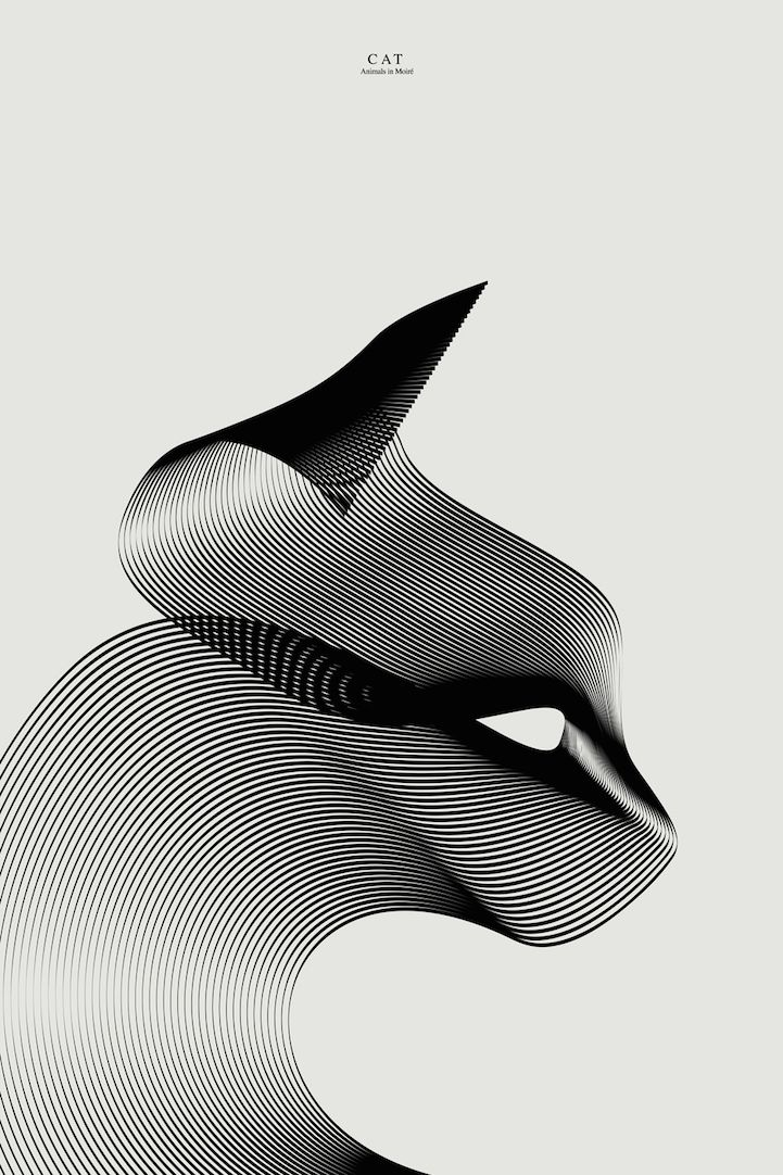Graphic designer Andrea Minini is adept at transforming clean, curving lines into elegant creatures. Through his vector illustrations, the artist conveys striking portraits of animals who are represented by sleek, flowing curves and thoughtful shadowing. 'What I love in graphic design is speed: good projects have to be clear and powerful at first sight,' Minini told us. For his latest series, the designer continues to expand upon his linear creations by adding color to his Animals in Moiré…