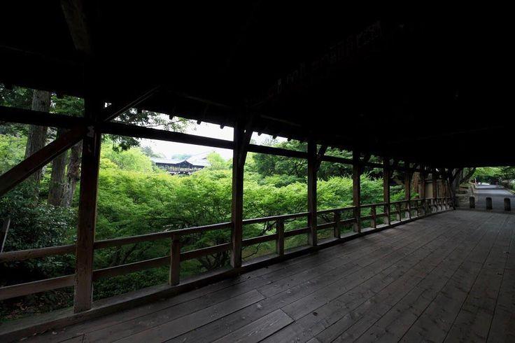 東福寺 臥雲橋 ☘️京都 〜Tofukuji-temple,Gaun-bridge,Kyoto,Japan〜 撮影日:28.May.2016 . ※超広角レンズ越しの私だけの世界… #kyoto_nara_my_best_selections #instagram #instatravel #discoverjapan  #japantravel #instatravel #ig_nippon  #japan #kyoto #earlysummer #tofukuji #green #gaunbridge #pictureframe #photooftheday  #canon #canonphotos #5dmarkiii #amazing  #japanesemapletree  #京都 #東福寺 #臥雲橋 #青もみじ #新緑 #緑 #超広角の世界  #そうだ京都行こう #そうだ京都は今だ #こんな京都があったのか #ファインダー越しの私だけの世界
