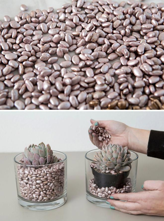 unbelievable WOW these Spray Painted Beans make beautiful vase filler! Worth see…