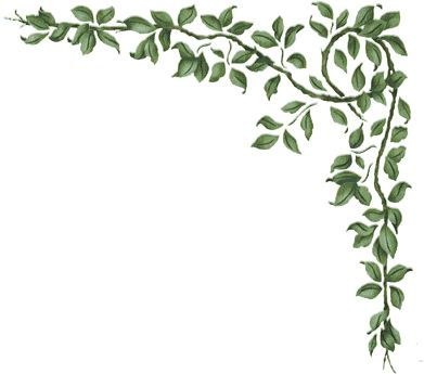 Plants: Free Borders for Scrapbooking.