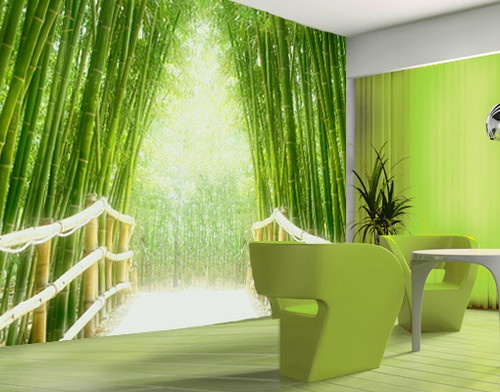 Photo wall mural bamboo walk 400x280 wallpaper wall art for Bamboo forest mural