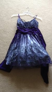 B. Smart Purple Dress $40
