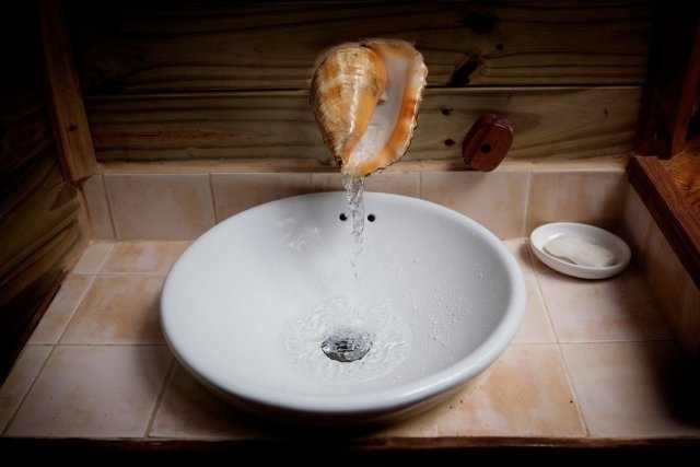 Shell Bathroom Sink : ... , Treehouse Community, Trees House, Bathroom Sinks, Bathroom Decor