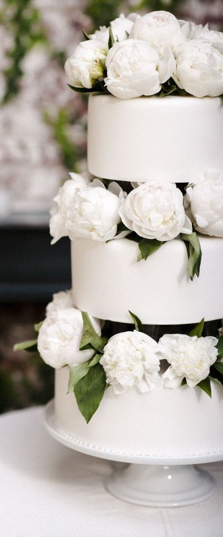 This cake screams 21st century modern day bride. There's nothing not to love. Clean and white all the way through