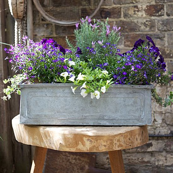Love the metal planter and the colors in this arrangement! Lavender, sage, and rosemary all have bluish purple blooms plus they smell lovely and can be used in the kitchen.