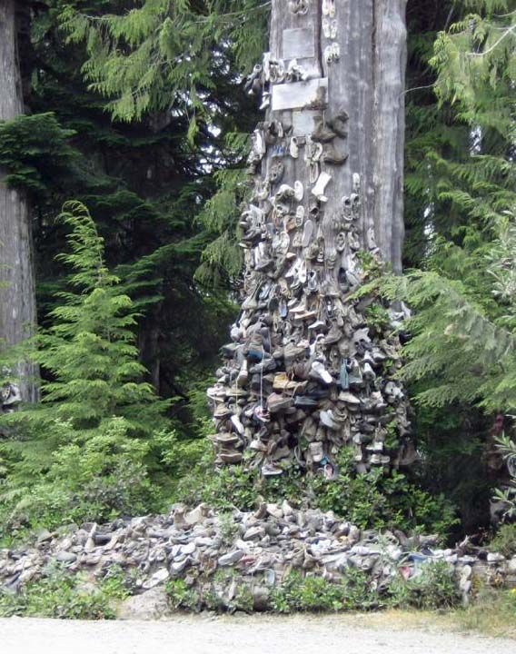 The Tree of Lost Soles on the gravel road to Holberg, BC on the north end of Vancouver Island. About 25 years ago some loggers nailed their worn out work boots to the big stump and hundreds of others have followed in their footsteps.