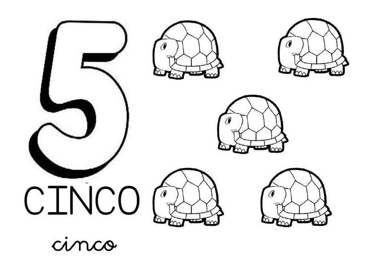 numero 5..