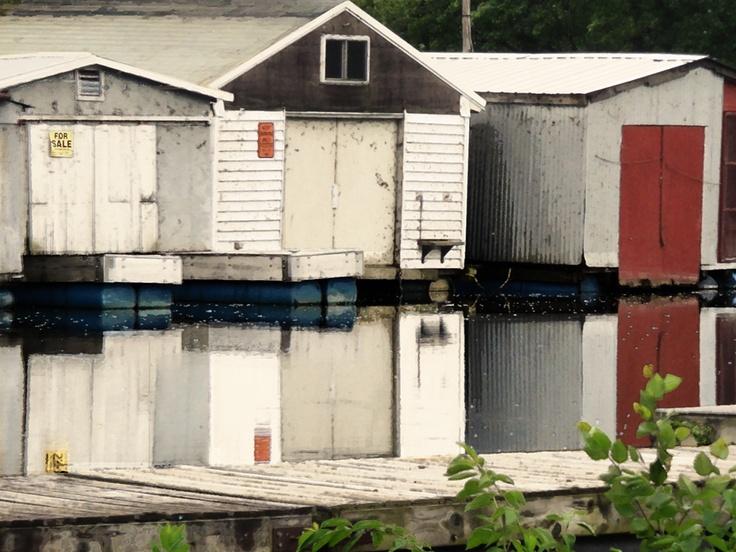 Winona Cove 2012