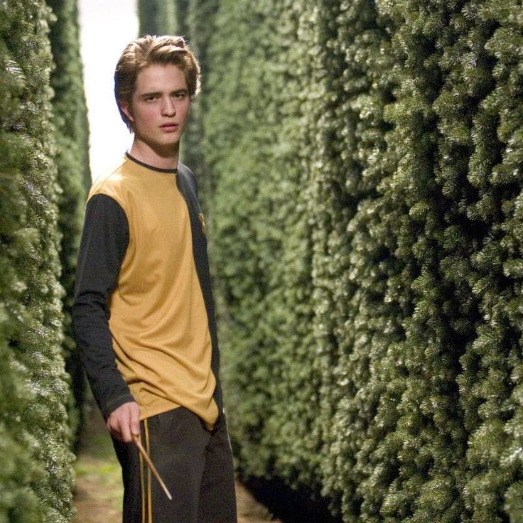 Why Hufflepuff is the best house in Harry Potter Robert