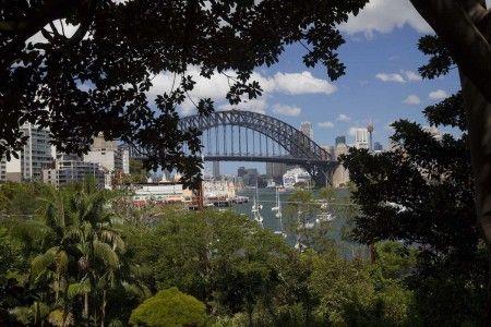Wendy Whiteley's Secret Garden, Lavendar Bay, Sydney. Image by Brent Wilson.