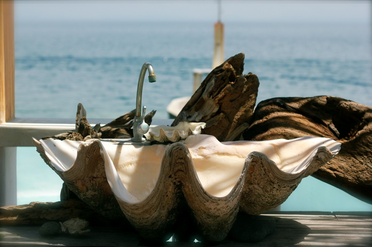 Giant Clam Shell Sink | Good Finds | Pinterest | Giant Clam Shell, Clam  Shells And Sinks
