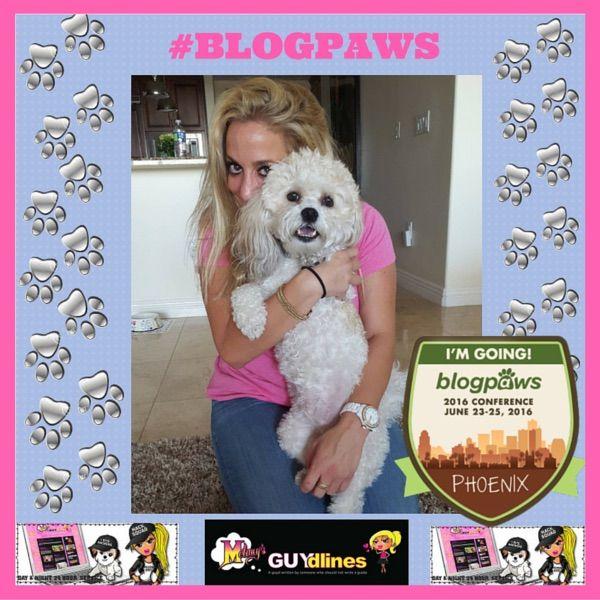 BlogPaws 2016: A Social Media Conference for My Dog, Teddy Brewski