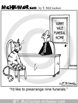 """A cat in a funeral home says, """"I'd like to ..."""