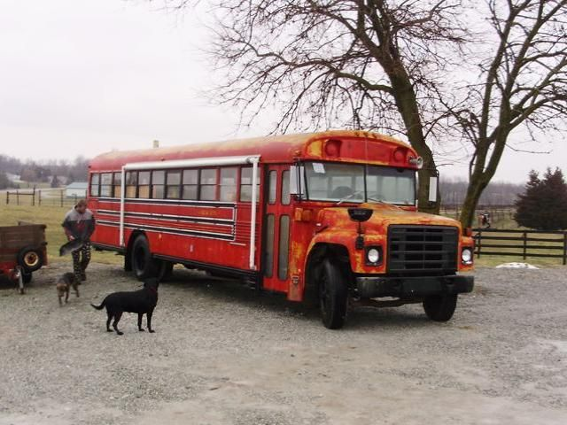 school bus campers for sale | School Bus Into Tiny House Conversion