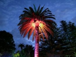 solar yard lights that add design and to your property