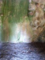Erscheinungen in der Grotte - ISA Heilung in Bühl/Neusatz Heilung für Körper -Geist und Seele.