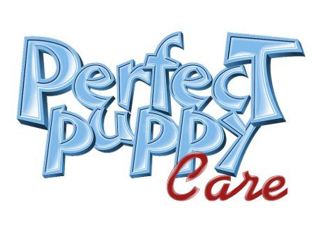 28 Best Potty Training A Puppy Images On Pinterest
