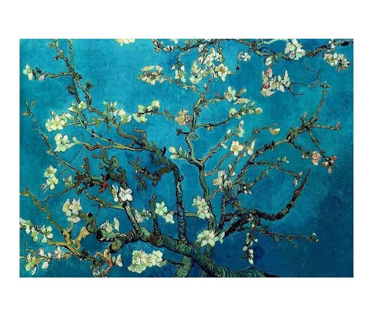 Tablou Branches with Almond Blossom - Vivre