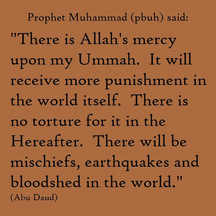 daily wisdom sayings of the prophet muhammad pdf
