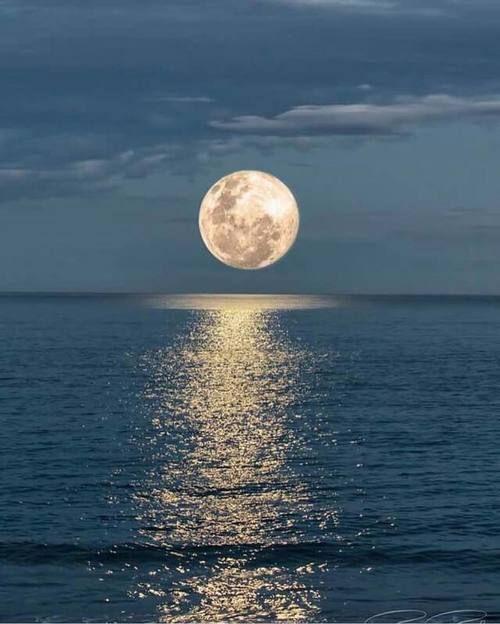 moon, ocean, and nature kép