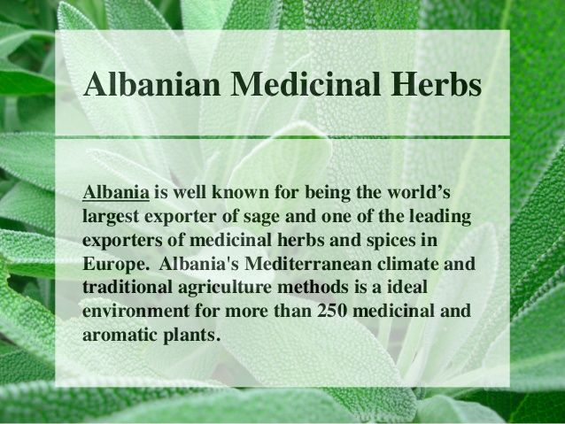 Albanian Medicinal Herbs  Albania is well known for being the world's  largest exporter of sage and one of the leading  ex...