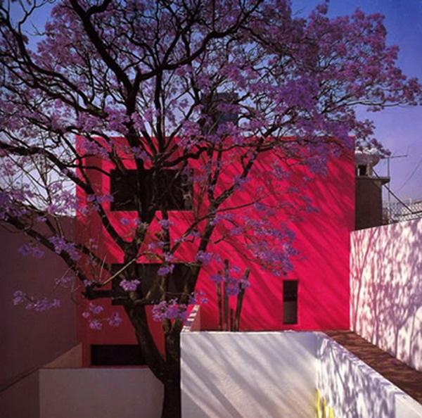 Gilardi House, Luis Barragan.