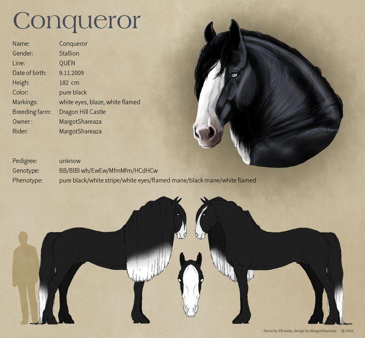 Reference Sheet - Conqueror by MargotShareaza.deviantart.com on @DeviantArt