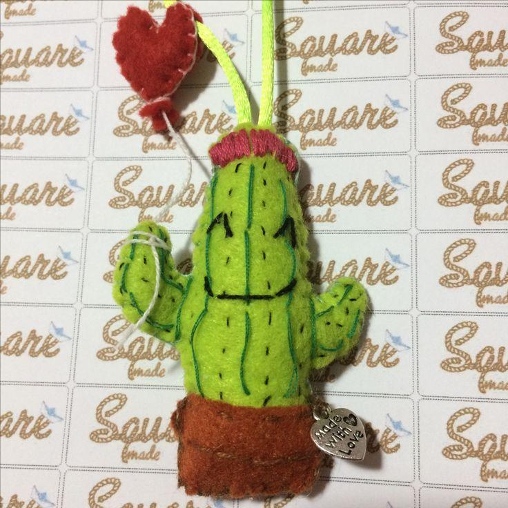 cactus felice 😍