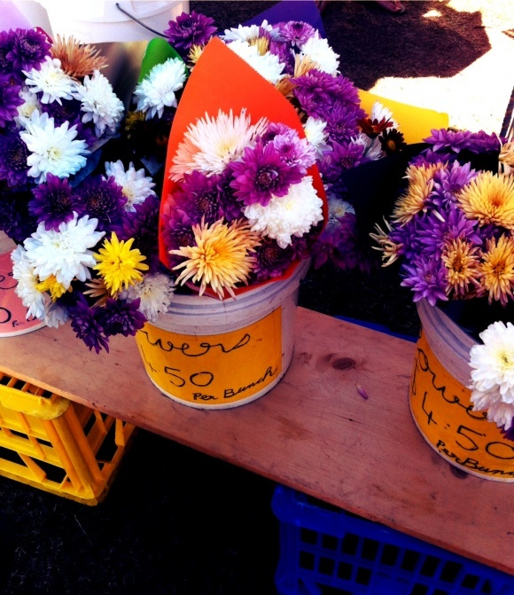 Flowers for tables, Yandina markets