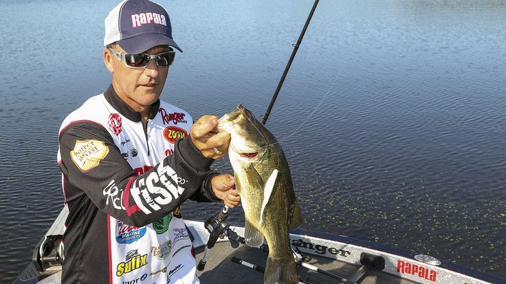 Bolton catches a lot of bass in the post spawn and fall on Zoom Super Flukes / David A. Brown
