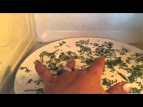 Dehidratando, Secado de especias, cilantro en microondas