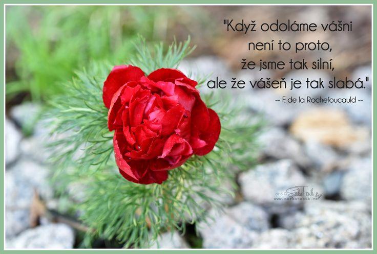 """""""Když odoláme vášni není to proto, že jsme tak silní, ale že vášeň je tak slabá."""" -- F. de Rochefoucauld --"""