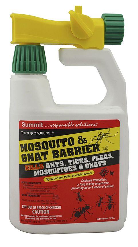 Best 25+ Gnat repellant ideas on Pinterest | Gnat spray, Diy mosquito repellent and Essential ...