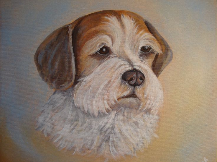 """""""Sweet Duchess"""", acrylic 10"""" x 10"""" commission painted by Pauline Dueck. #dogportraits"""