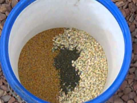How to Make Homemade Organic GMO Free Chicken Feed