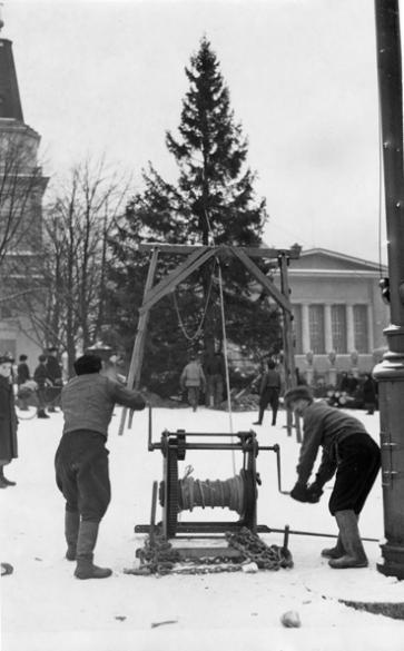Keskustorin joulukuusta nostetaan pystyyn 1937. Vapriikin kuva-arkisto.