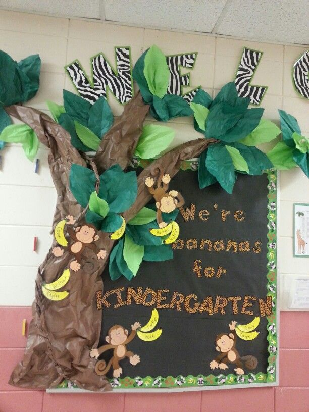 Rainforest Theme Classroom Ideas ~ Best ideas about jungle bulletin boards on pinterest