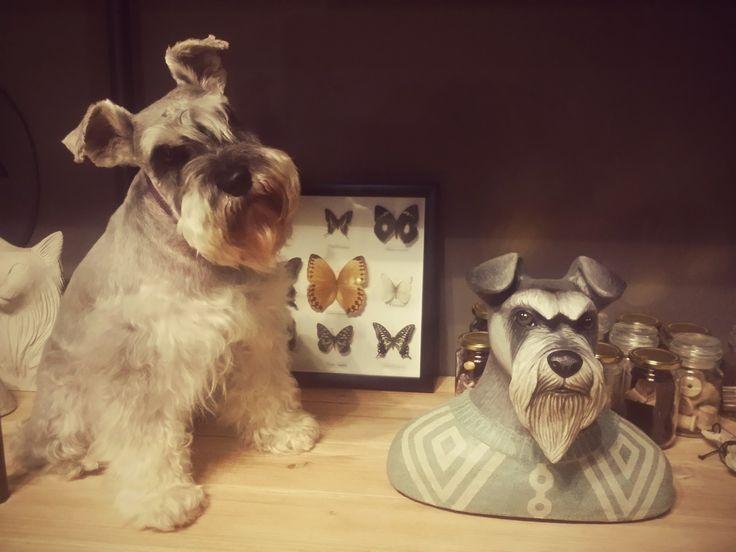 custom made pet sculptures