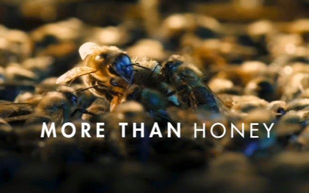 Ορεινή Μέλισσα: Το ΞΑΚΟΥΣΤΟ μελισσοκομικό ντοκιμαντέρ MORE THAN HONEY - Δείτε το ΟΛΟΚΛΗΡΟ ΜΕΤΑΦΡΑΣΜΕΝΟ