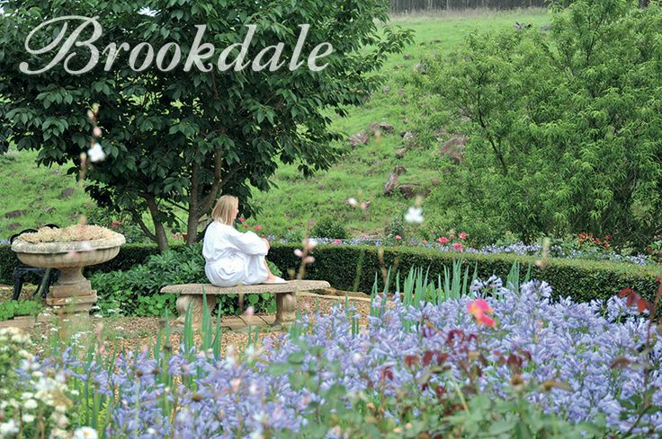 Herb Garden at Brookdale Health Hydro