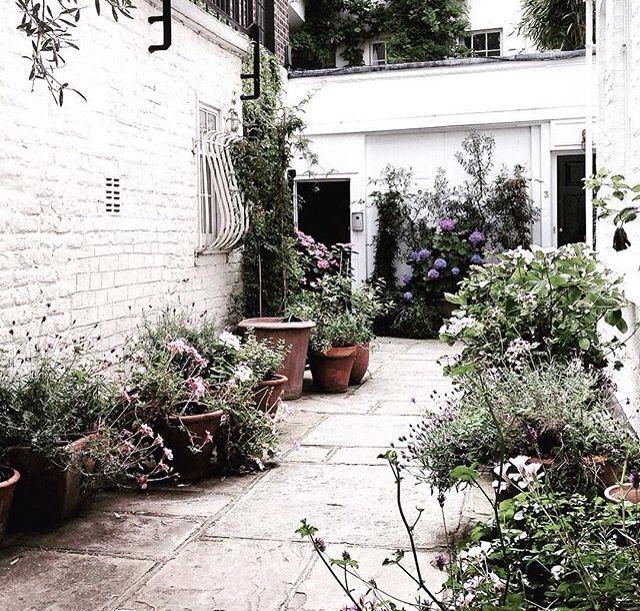 987 best Im Garten images on Pinterest Balcony, Gardening and